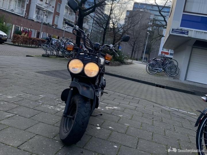 Honda Zoomer zwart